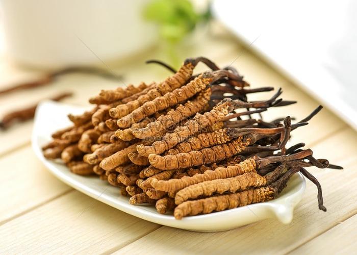 Đông trùng hạ thảo Tây Tạng - Biogreen