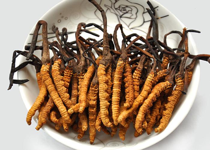 Đông trùng hạ thảo khô nguyên con Biogreen
